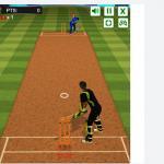 Kriket izazov