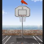 Moja mini košarka