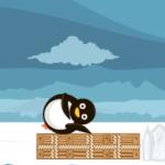 Leteći pingvini