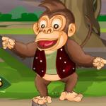 Manijak majmun