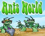 Mravi svijet