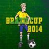 Brazilski kup 2014