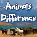 Životinjske razlike