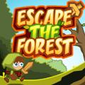 Pobjeći iz šume