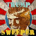 Trump čistač